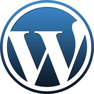 WordPress se přesouvá do verze 3.0.1