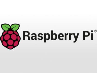 Raspberry Pi logo freebit