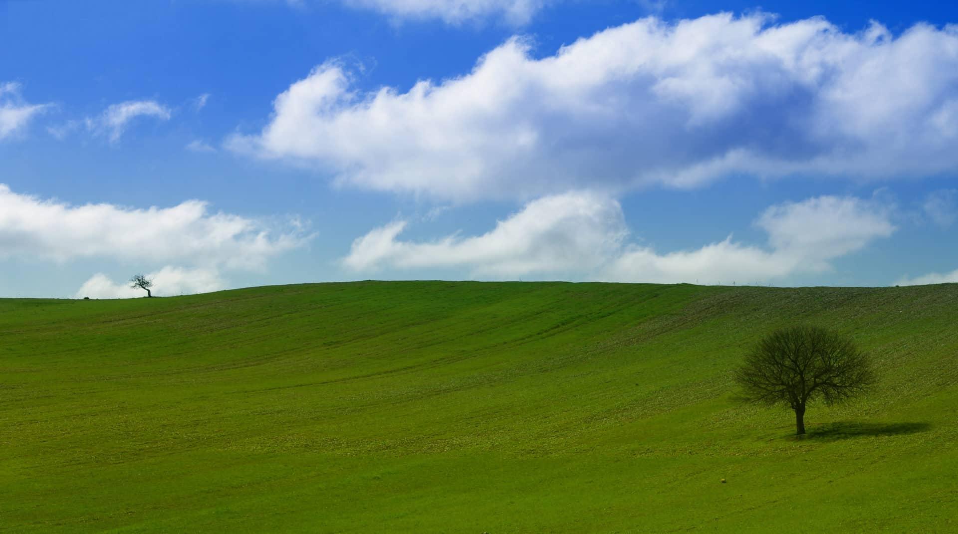 POS: Aktualizace pro Windows XP