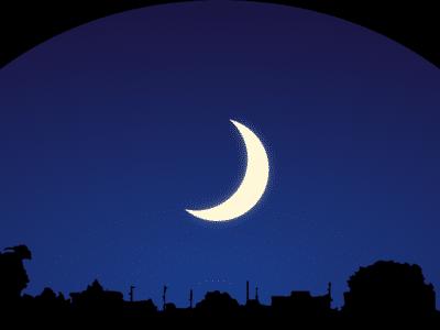 noc mesic logo